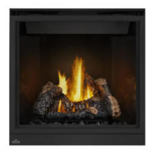 Napoleon High Definition HD35 Direct Vent Gas Fireplace