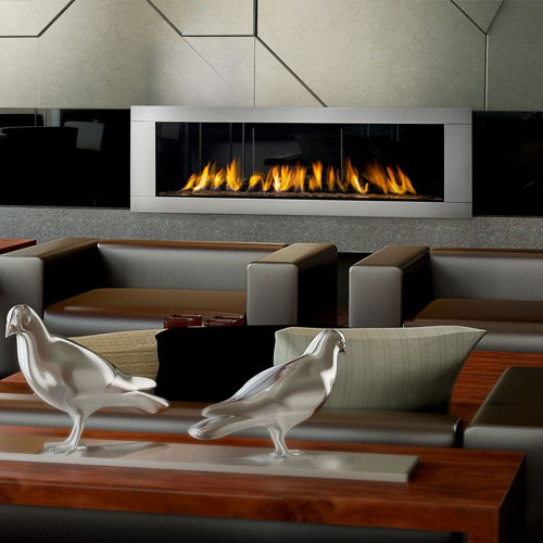 Napoleon Gas Fireplace Vector 62
